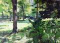 beukenhaag-landgoed-beeckestijn-img_2825